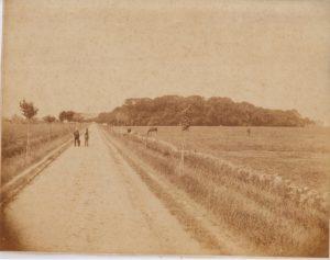 Landstraße von Pewsum nach Groothusen
